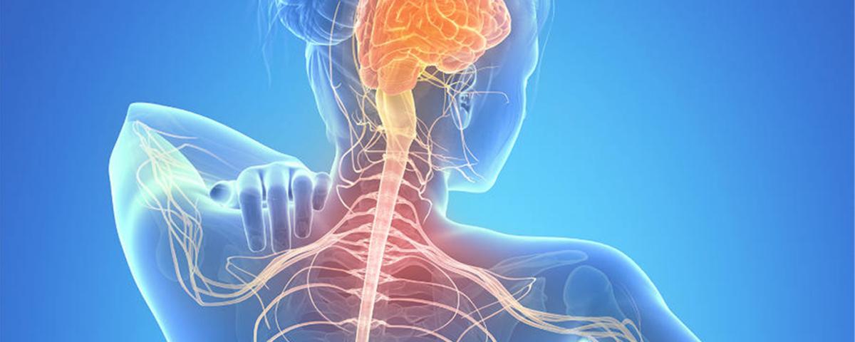 Esclerose Múltipla: um desafio para medicina